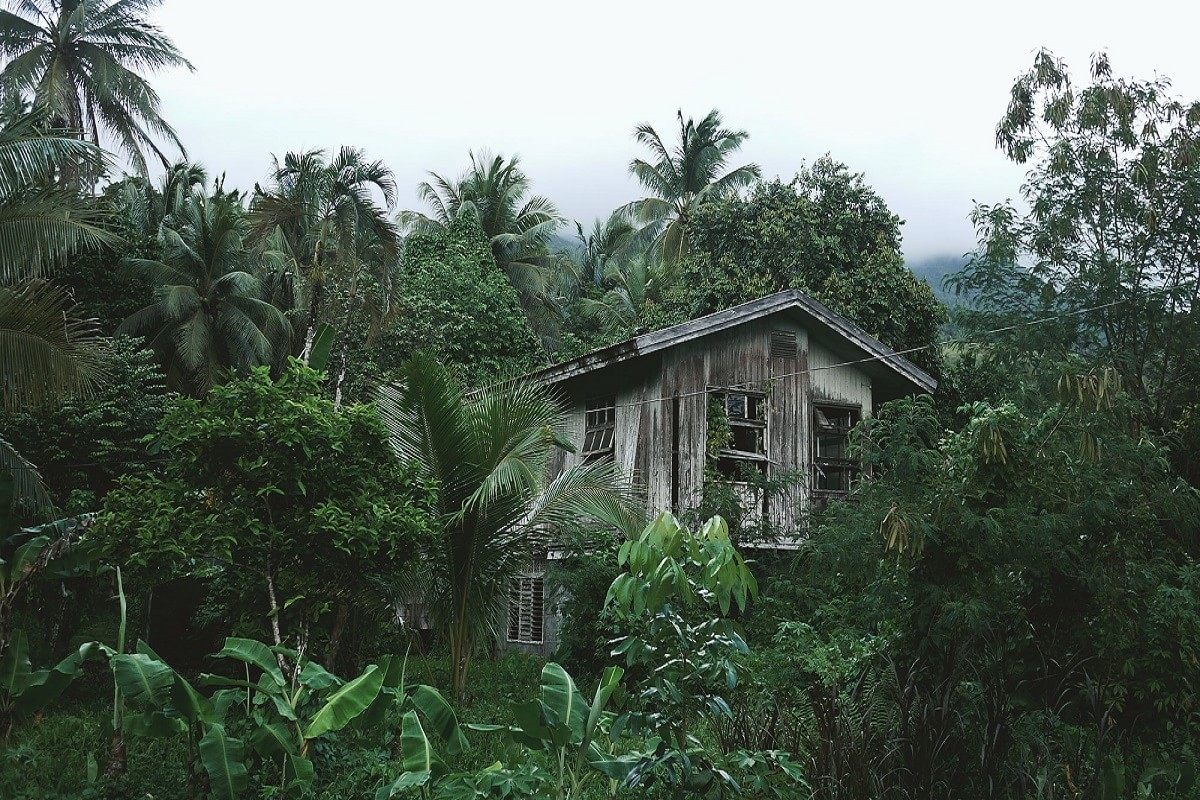 Dilapidated building in the jungle